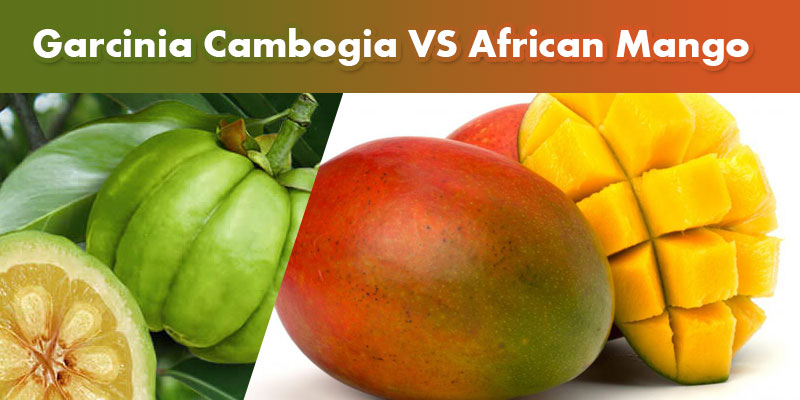 garcinia and african mango