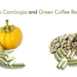What Happens When You Combine Garcinia Cambogia With Green Coffee Bean Extract?