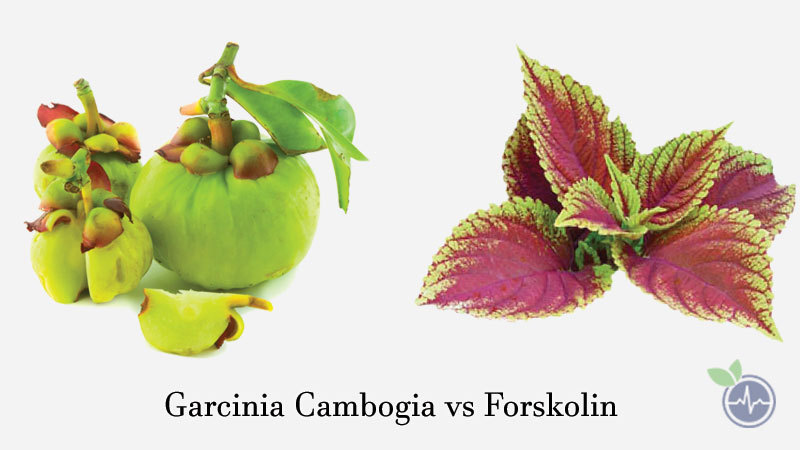 Ingredients in garcinia cambogia extra