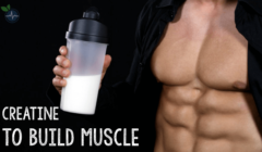 How Much Creatine Should I Take a Day to Build Muscle