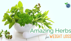 Amazing 10 Herbs for Weight Loss