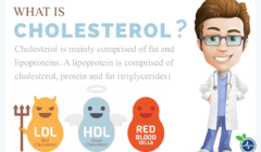 How Long Does it Take to Lower Cholesterol