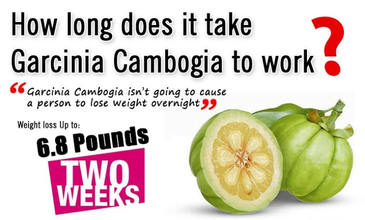 does-garcinia-cambogia-work.jpeg