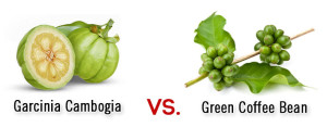 Garcinia Cambogia vs. Green Coffee Bean Extract